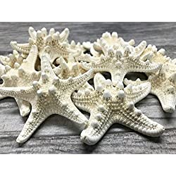"Nautical Crush Trading Knobby Starfish | 12 Knobby Starfish White 3"" to 4"" TM