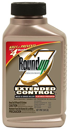 Roundup Extended Control Weed and Grass Killer Plus Weed Preventer II Concentrate, 16-Ounce by Roundup