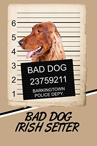 Bad Dog Irish Setter: Beer Tasting Journal Rate and Record Your Favorite Beers Collect Beer Name, Brewer, Origin, Date, Sampled, Rating, Stats ABV IBU ... meter, Note and Flavor wheel ()