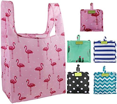 Foldable Reusable Grocery Bags Bulk 5 Cute Designs Folding Shopping Tote Bag Fits in Pocket Eco Friendly Ripstop Nylon Waterproof and Machine Washable ...