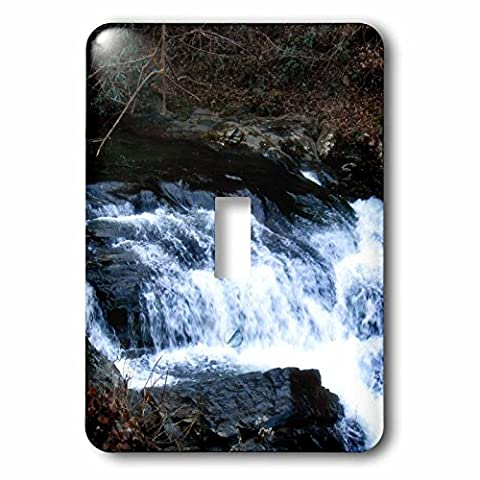 3dRose lsp_172317_1 a Stream in The Smokey Mountains by Cades Cove Light Switch Cover - Cades Cove Smokey Mountains