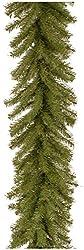 National Tree Norwood Fir Garland, 9 Feet, 12 Inches