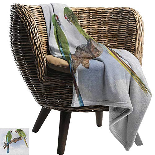 Alexandear Parrot,Custom Design Cozy Flannel Blanket,Two Parrot Macaw on a Branch Talking Birds Clever Creatures of The Nature 50