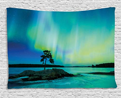 Ambesonne Aurora Borealis Tapestry, Single Tree Over Rocky Stone by River Borealis Earth Beauty Image, Wall Hanging for Bedroom Living Room Dorm, 60 W X 40 L Inches, Lime ()