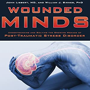 Wounded Minds Audiobook