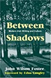 img - for Between Shadows by John Wilson Foster (2011-09-30) book / textbook / text book