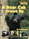 A Bear Cub Grows Up (Scholastic News Nonfiction Readers: Animal Life Cycles)