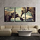 wall26 - 3 Piece Canvas Wall Art - Elephant Kissing Represents Love, Sri Lanka. Vintage Nature Background - Modern Home Decor Stretched and Framed Ready to Hang - 16''x24''x3 Panels