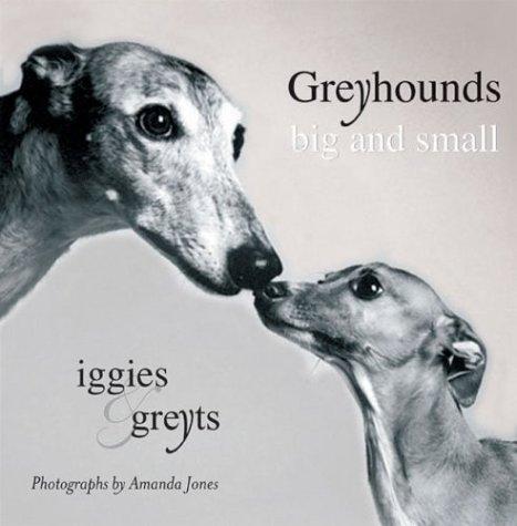 Download Greyhounds Big and Small : Iggies and Greyts PDF