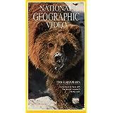 Nat'l Geo: Grizzlies