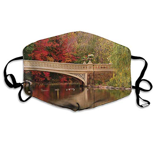 NYC Fashion Mouth Mask Bow Bridge in Autumn Season for Cycling Camping Travel W4
