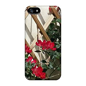 Protection Case For Iphone 5/5S Cover For Iphone(red Roses Old Fashion)