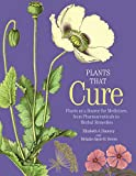 Plants That Cure: Plants as a Source for