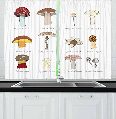 Ambesonne Mushroom Kitchen Curtains, Colorful Fungi Pattern Blusher Boletus Sketch Style Plants Autumn Illustration, Window Drapes 2 Panel Set for Kitchen Cafe, 55 W X 39 L inches, Multicolor ()