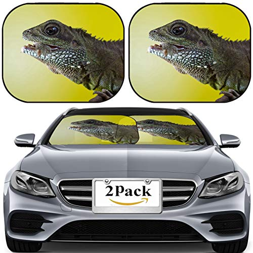 MSD Car Sun Shade for Windshield Universal Fit 2 Pack Sunshade, Block Sun Glare, UV and Heat, Protect Car Interior, Close up Portrait of Beautiful Water Dragon Lizard Reptile Eating an Insect P
