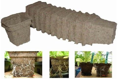 cowpots Eco macetas. Gran Para el cultivo de plantas ...