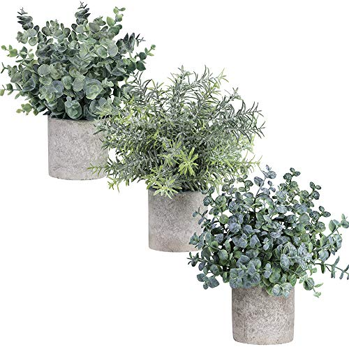 Winlyn Set of 3 Mini Potted Artificial Eucalyptus Plants Plastic Fake Green Rosemary Plant for Home Decor Office Desk… 7