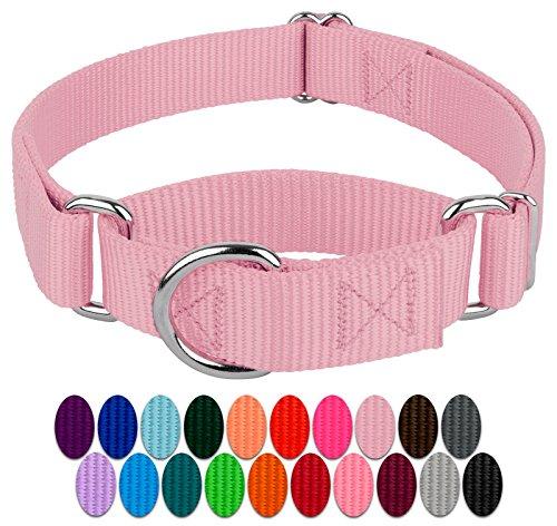 Country Brook Design - Martingale Heavyduty Nylon Dog Collar (Medium, 1 Inch Wide, Lilac)
