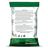 100% Natural Henna Powder Specially For Hair - Bulk Pack -Triple Sifted Henna Powder - Lawsonia Inermis (For Hair) 02 LB / 32 oz (908 gms)- No PPD no chemicals, no parabens