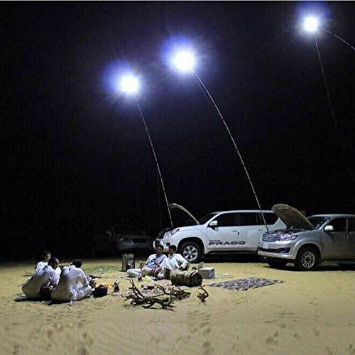 UBOWAY Outdoor Lamp Telescopic Fishing Rod Lamp with IR Remote for Camping, Fishing, Travelling, Party 12V (Longish)