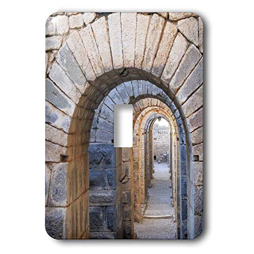 (3dRose Danita Delimont - Turkey - Turkey, Bergama, Pergamon. Arches of the sanctuary of Trajan - single toggle switch (lsp_312875_1) )