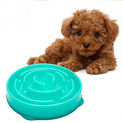 Slow feeder dog bowl Dog food bowl to slow down eating Dog food bowl slow feed