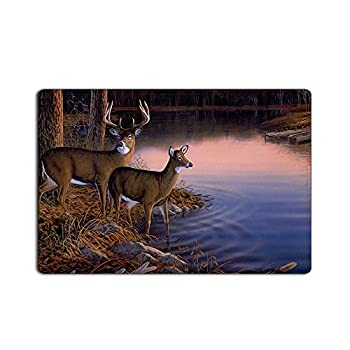 CHARMHOME Fashion Custom River Edge Deers Doormat 23.6(L) x 15.7(W)