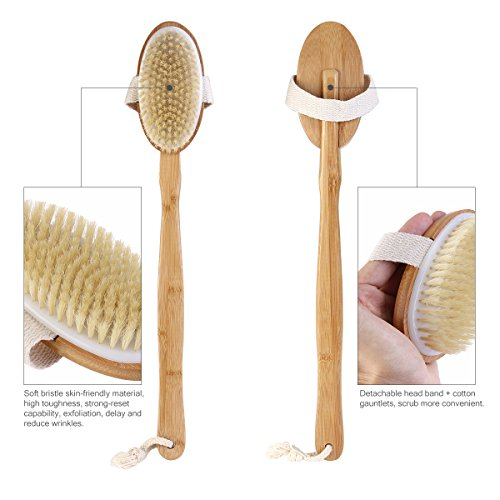 TINKSKY Bathbrush Detachable Exfoliating Circulation
