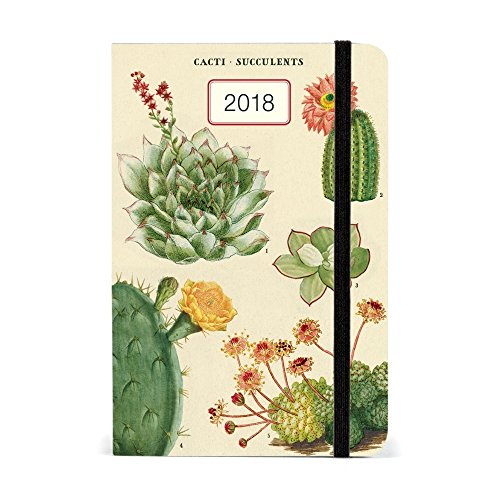 Cavallini Papers & Co., Inc. Succulents Weekly Planner Cavallini 2018