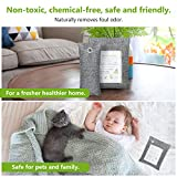 Bamboo Charcoal Air Purifying Bag, Natural Air