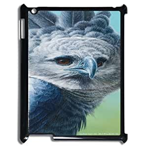 Bald eagle at sky Case Cover Best For Ipad 2/3/4 Case FBGH-T502755