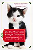 Download The Cat Who Came Back for Christmas: How a Cat Brought a Family the Gift of Love in PDF ePUB Free Online