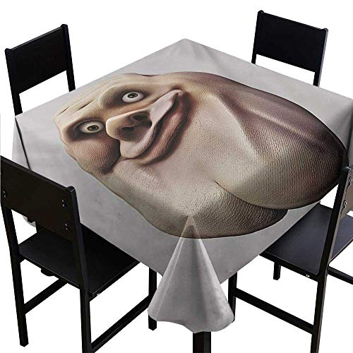 OUTDRART Party Table Cloth Humor,Awkward Meme Face with Unusual Facial Gesture Ugly Mock Smug Forum Art Design,Pearl and Tan,W36 x L36 Square Tablecloth -