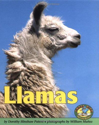 Llamas (Early Bird Nature Books) by Brand: Lerner Publishing Group (Image #2)