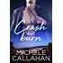Crash and Burn (Love You Like A Love Song Book 1)