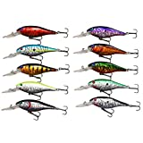 10pcs/lot Hard Minnow Fishing Lures Bait Life-like Swimbait Bass Crankbait for Pikes/Trout/Walleye/Redfish Tackle with 3D Fishing Eyes Strong Treble Hooks (10pcs Minnnow Lures~10cm(3.9inch))