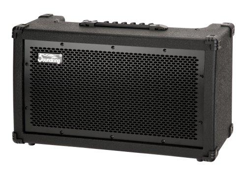 Soundking GR40 Gitarrencombo (2-Kanal, DSP-Effekte, 80 Watt)