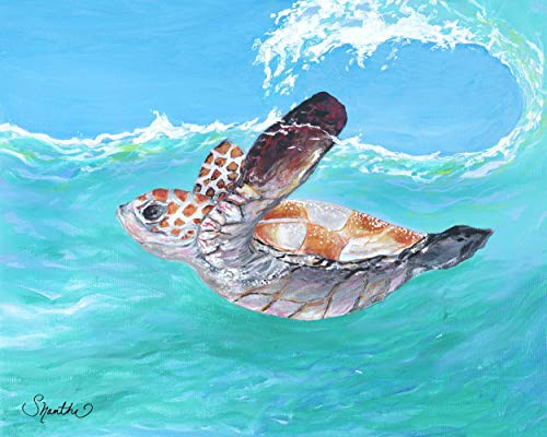 Journey Begins - Baby Sea Turtle Decor - Coastal Interior Design - (Turquoise, Aqua, Blue)
