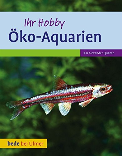 Öko-Aquarien: Umweltfreundlich, sparsam