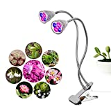 HiHydro Dual Head 10W LED Plant Grow Light, 360 Adjustable Gooseneck Grow Lights for Indoor Plants Hydroponic Greenhouse Gardening Plant