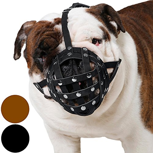 CollarDirect Basket Dog Muzzle for Boxer, English Bulldog , American Bulldog Secure Leather Muzzle (Cairn Terrier Grooming)