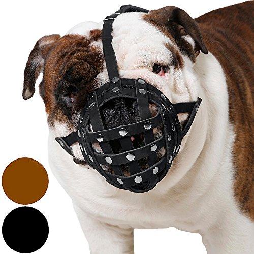 english bulldog dresses - 1