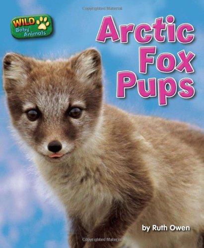 Arctic Fox Pups Wild Baby Animals Owen Ruth 9781617721564 Amazon Com Books