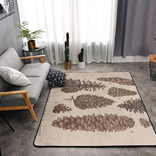 Memory Foam Area Rugs for Hotel Children Bedroom Bedroom, Non-Slip Backing Doormat Floor Mat Comfortable Throw Rugs Carpet, Machine Washable, I Like Exercise Pinecones