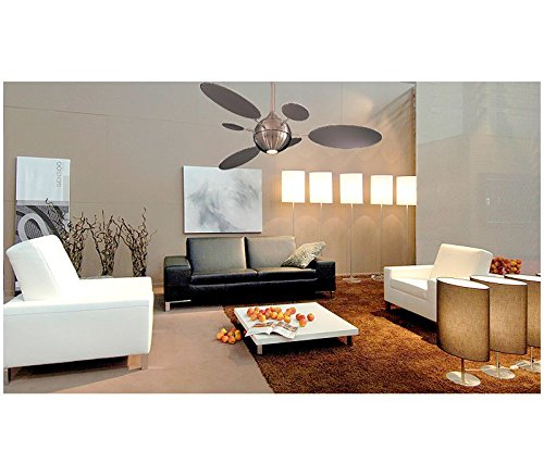 Minka aire f596 bn cirque 54 ceiling fan brushed nickel minka aire f596 bn cirque 54 ceiling fan brushed nickel modern ceiling fan amazon mozeypictures Choice Image