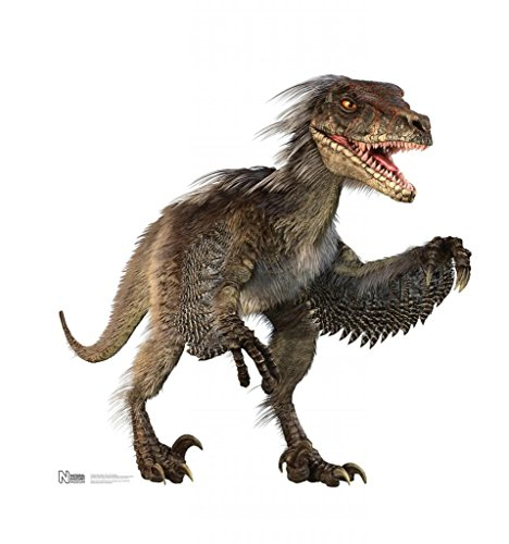 Velociraptor - Advanced Graphics Life Size Cardboard Standup -