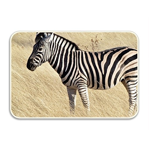 Ranhkdn Common Zebra Welcome Floor Doormat Home Decor Durable (Chenille Zebra Fabric)