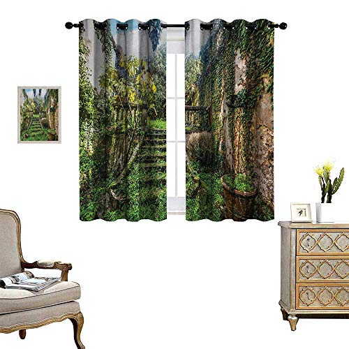(Nature Room Darkening Wide Curtains Ancient Fairytale Theme Hidden Garden with Botanic Trees Flowers Ivy Image Print Customized Curtains W63 x L63 Multicolor)