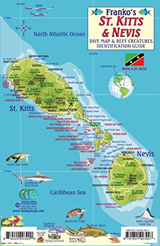 St. Kitts & Nevis Dive Map & Reef Creatures Guide Franko Maps Laminated Fish Card