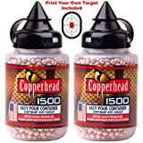 Sporting Goods : JustHangin' Copperhead 3000 Premium BBS Bundle - (2 Containers of 1500 Each), Model: 0730 Calibre 4.5mm, Made in The USA